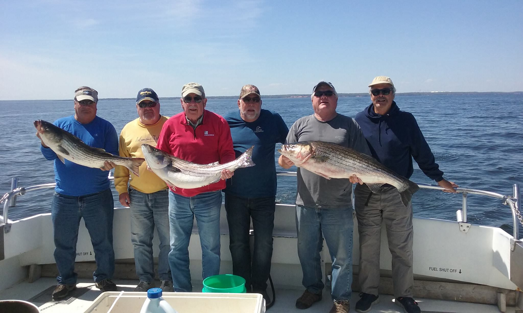Nice Catch Of Maryland Rockfish!