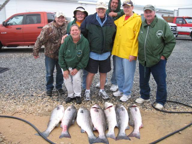 Full Limit Of Trophy Maryland Rockfish! Maryland Chesapeake Bay Fishing Charters