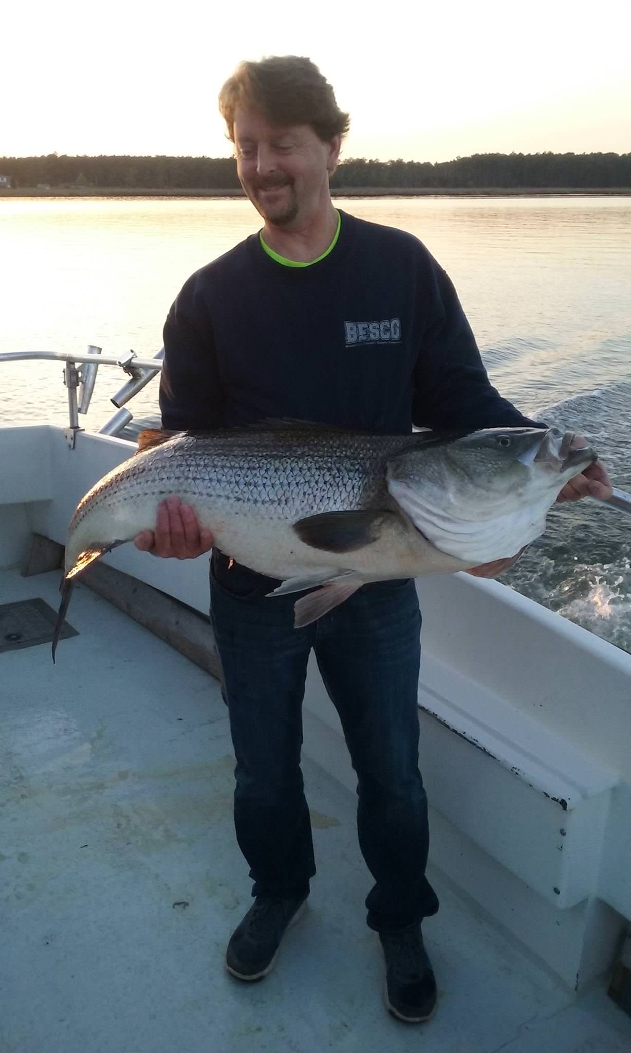 Huge Maryland Rockfish Caught On The Eastern Shore!