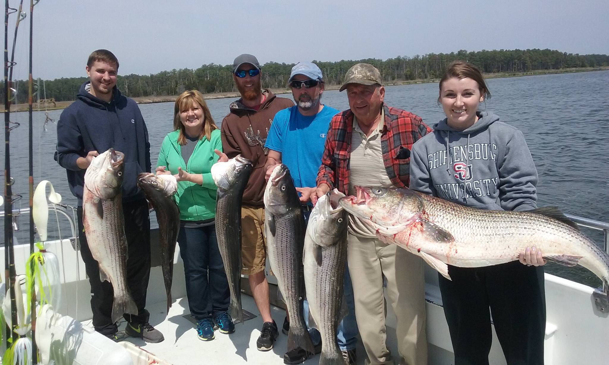 A BIG Limit Of Maryland Rockfish On The Chesapeake Bay!