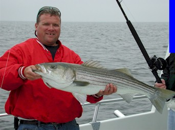 Capt. Dave Schauber, Maryland Fishing Guide and Charter Boat Captain