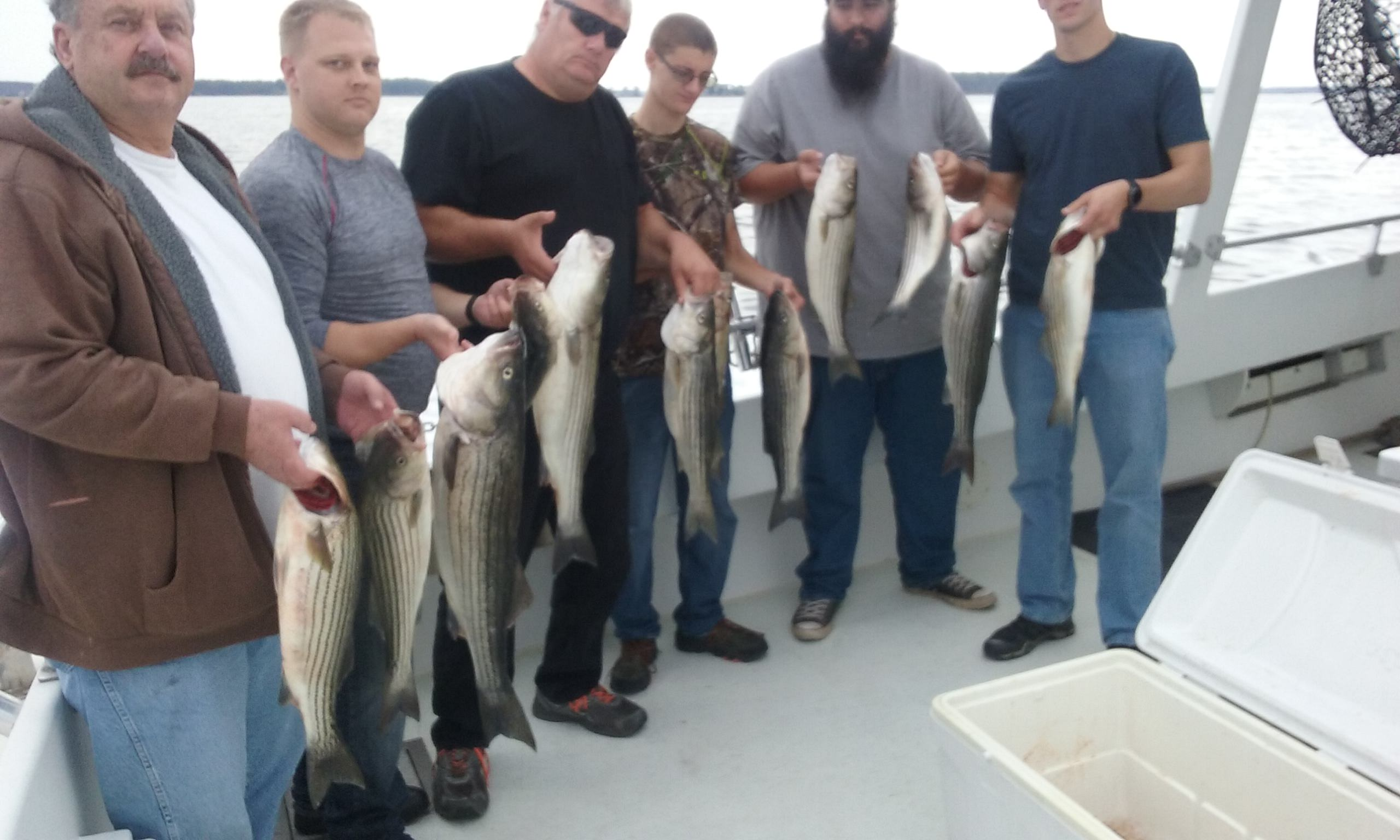 More Maryland Rockfish From The Chesapeake Bay!